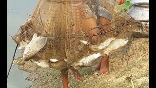 Fishing By Net In Pond | All Fish Catching In Pond | Awesome Fishing In Pond.