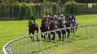 Vidéo de la course PMU PRIX AD ALTIORA