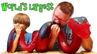World's Largest Gummy Snake