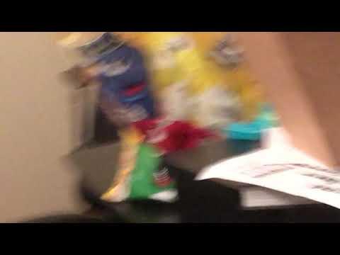 Wild cat attack