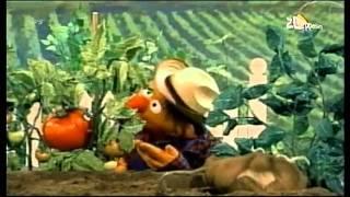 Kijk Groenten (Ernie) filmpje