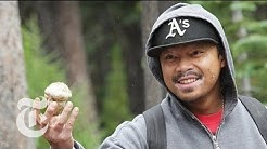 Matsutake Mushroom Hunting in Oregon - 2013 | The New York Times