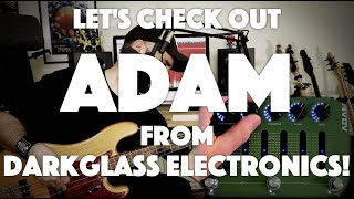 Let's check out ADAM from Darkglass Electronics!