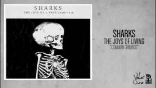 Watch Sharks Common Grounds video