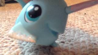 Lps Narwhal Song