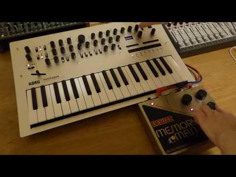 Korg Minilogue & EHX Deluxe Memory Man