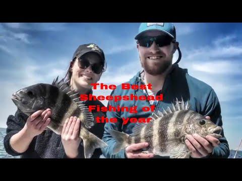 Sheepshead Fishing on the Alabama Gulf Coast