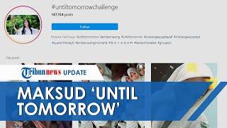 Ramai Di Instagram 'until Tomorrow Challenge', Jadi Trending 1 Di Twitter, Ternyata Ini Maksudnya