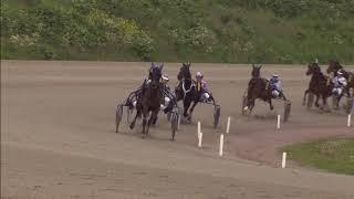 Vidéo de la course PMU CRITERIUM DES 3 ANS