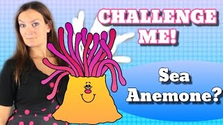 SEA ANEMONE Balloon Animal Challenge #1