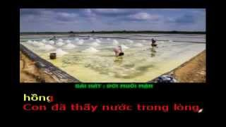 ĐỜI MUỐI MẶN - Thơ : Maylangthang Tdx  - Phổ nhạc : Hải Anh karaoke Khong loi