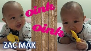 Funny Baby Laughing and Crying to Pig Oink Sound