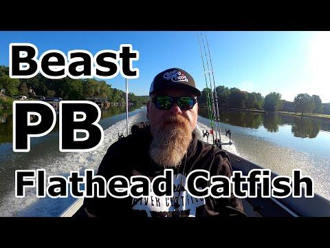 Catching Huge Flathead Catfish - My New PB