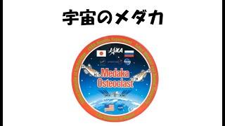 3)宇宙のメダカ 茶谷 昌弘(昭和大学)
