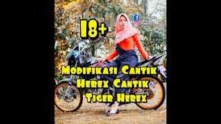 Download Video MODIFIKASI TIGER HEREX | SPESIAL MODEL CANTIK ] MP3 3GP MP4