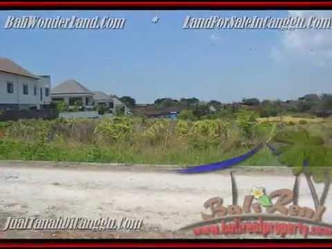 Magnificent PROPERTY 3.500 m2 LAND SALE IN CANGGU TJCG165