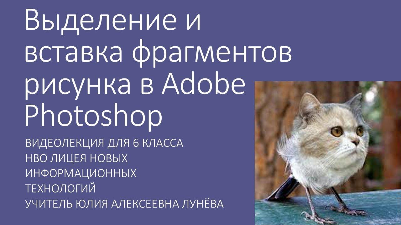 Выделение и вставка фрагментов рисунка в Adobe Photoshop ...