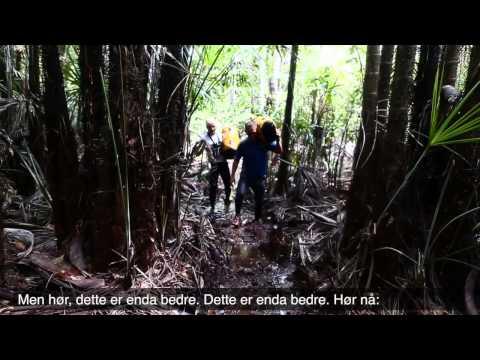 Team Norway Xtreme running the Jungle Marathon (257km) in Amazonas Brazil 2013