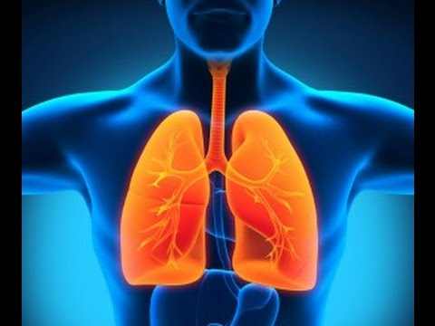 what-causes-mesothelioma-other-than-asbestos