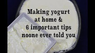Homemade Yogurt Natural & Plain, 6  Tips You've Never Heard Before