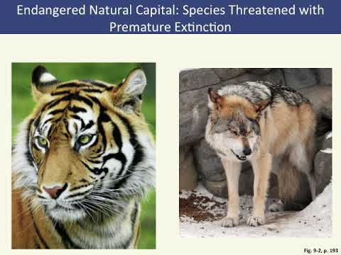 APES - Chapter 9: Sustaining Biodiversity: The Species Approach
