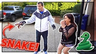 SCARING MAMA RUG & BRAWADIS WITH A SNAKE!(insane freakout)