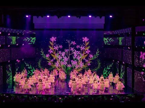 Kuwait National Day Concert 2018 Vissuals