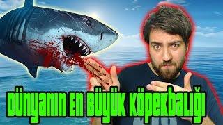 ARK SURVİVAL EVOLVED - Sezon 2 - DÜNYANIN EN BÜYÜK KÖPEK BALIĞI !!!