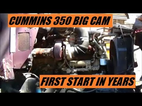 Cummins 350 Big Cam First Start In Years & Painted Rollback