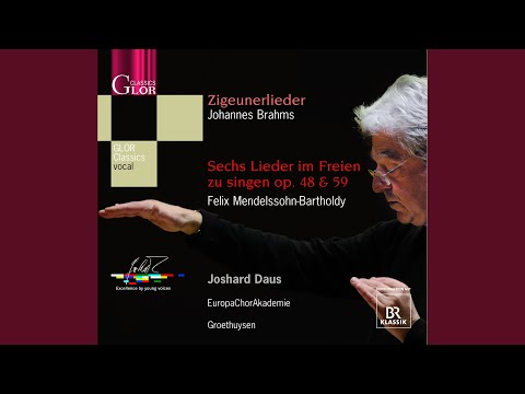 11 Zigeunerlieder (Gypsy-Songs) , Op. 103: No. 8. Horch, der Wind klagt in den Zweigen