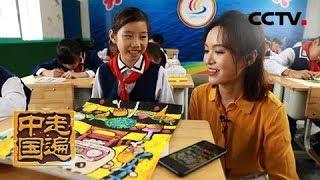 《走遍中国》 20190619 5集系列片《移动改变生活》(3) 同步课堂| CCTV中文国际