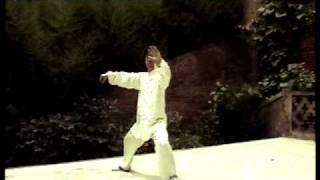 Chen Zheng Lei Cannon Fist