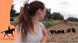 Gambar cover Vlog #4 - Videos, Großputz & ein bockendes Pferd