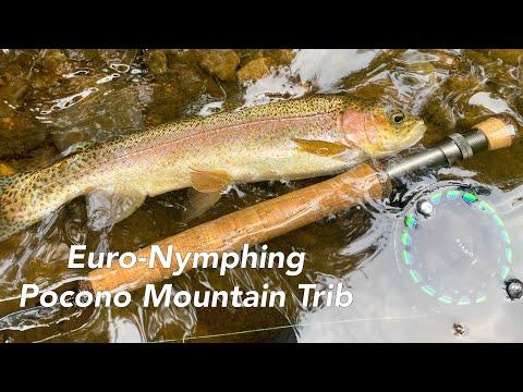 Euro-Nymphing A Pocono Mountain (Class A) Tributary