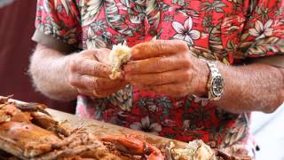 How to pick Maryland Blue Crabs