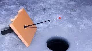 зимняя рыбалка Алматы два выезда по 12 часов фото видео отчет
