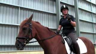 Fiber Fresh Feeds Equine TV: EP 39 - Shrink your signals