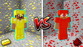 Minecraft NOOB vs. PRO: GOLD or REDSTONE BATTLE in Minecraft!