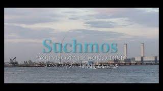 4.27・パシフィコ横浜 サチモスのライブに行ってきました。 ※注】動画中 サチモスの映像・音楽・音声等は一切登場しません。