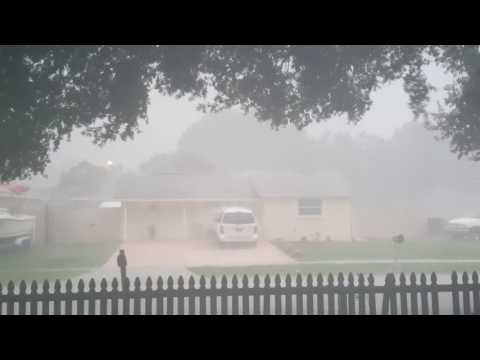 Hurricane Hermine -Tampa, FL 9/01/16
