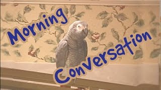 Morning Conversation with Einstein the Talking Texan Parrot