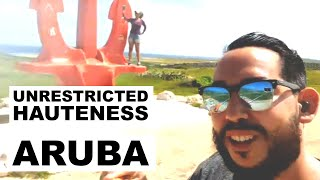 The Red Anchor, Flamingos & the Art District in Aruba! | TOUR RECAP