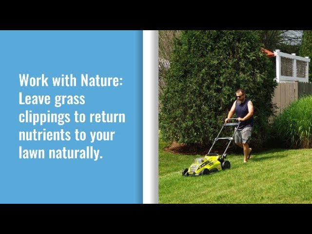 Leave Grass Clippings