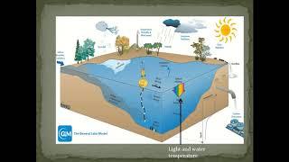 Episode 8. Lake Ecosystem Resilience - Michael Thayne