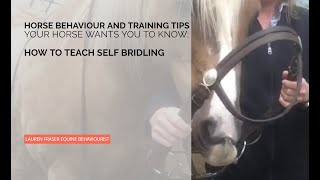 Bridle Yourself: Teach Your Horse To Willingly Put The Bit In Their Own Mouth
