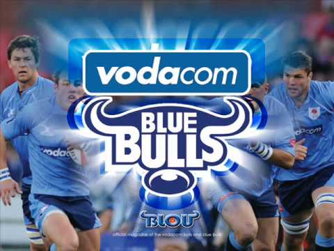 Whackhead tests a Blue Bulls fan