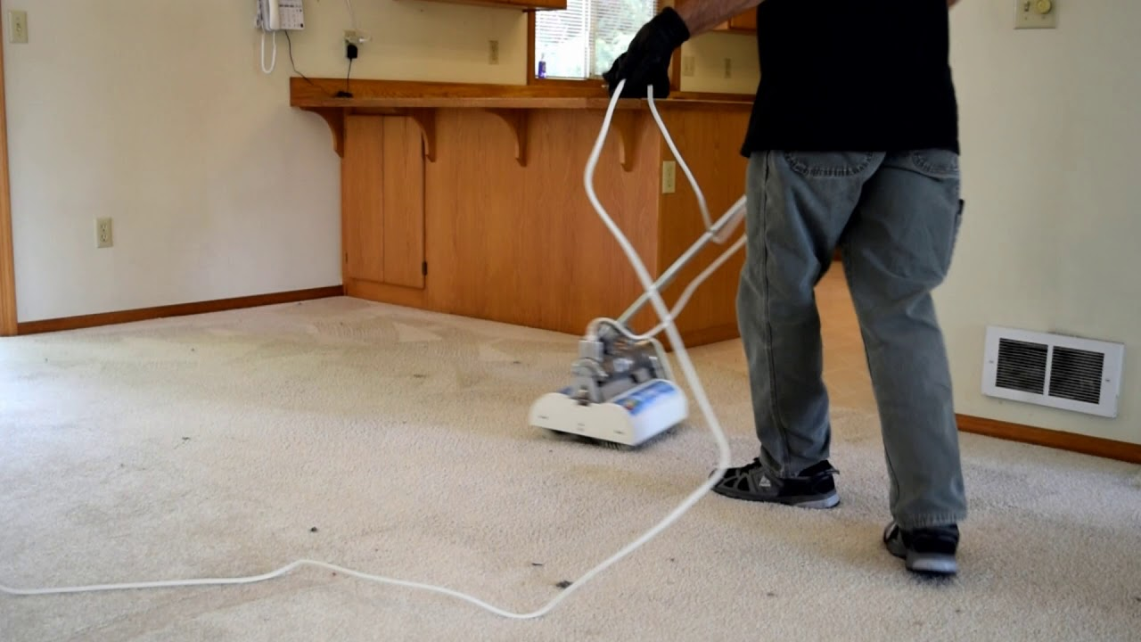 All Seasons Carpet Cleaning The Teen Years Music