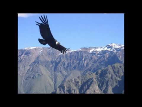 El Condor Pasa,  (Daniel Alomia Robles)  Canta Selene