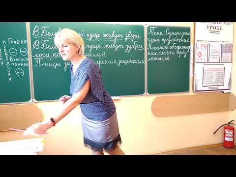 4 класс. Урок русского языка. Однородные члены предложения