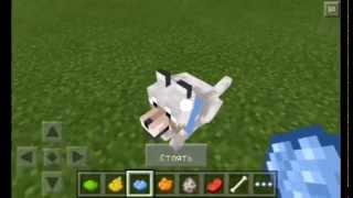 Как покрасить ошейник собаке в Minecraft Pocket Edition 0.11.0